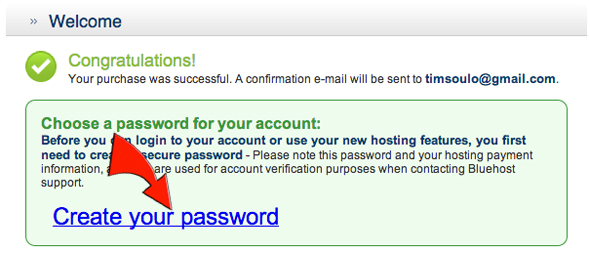 create-password-for-hosting-account