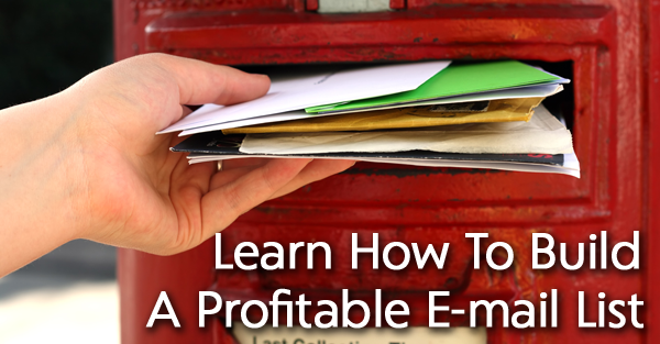 learn-to-build-profitable-email-list