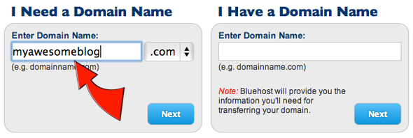 setup-domain-name-bluehost